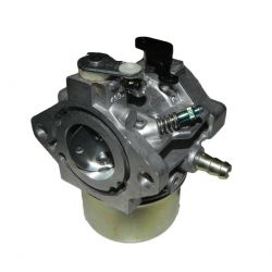 Carburetor Briggs & Stratton 790019