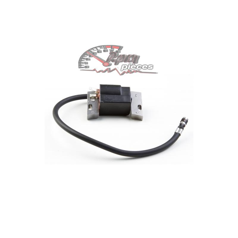 module d 39 allumage coil briggs stratton 799650. Black Bedroom Furniture Sets. Home Design Ideas