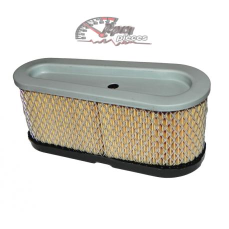 Air filter Briggs&Stratton 493909