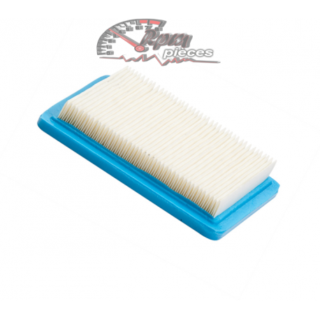 Air filter Briggs&Stratton 491588