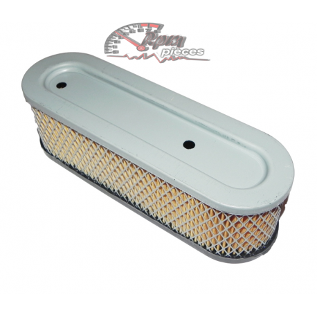 Air filter Briggs&Stratton 491519
