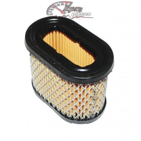 Air filter Briggs&Stratton 690610