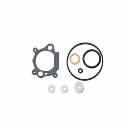 Carburetor repair kit Briggs & stratton 490937