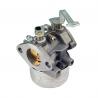 Carburetor Tecumseh 640260A