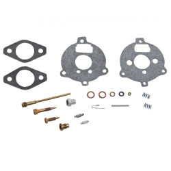 Carburetor repair kit Briggs & stratton 394693