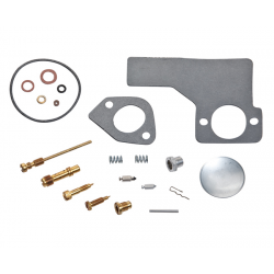 Kit de carburateur Briggs & tratton 394698