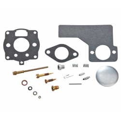 Kit de carburateur Briggs & tratton 394989