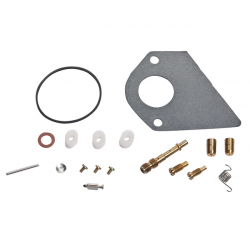 Kit de carburateur Briggs & tratton 497481