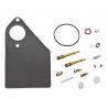 Carburetor repair kit Briggs & stratton 497578