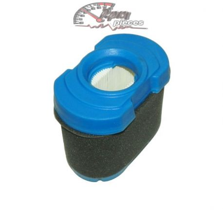 Air filter Briggs & Stratton 792105