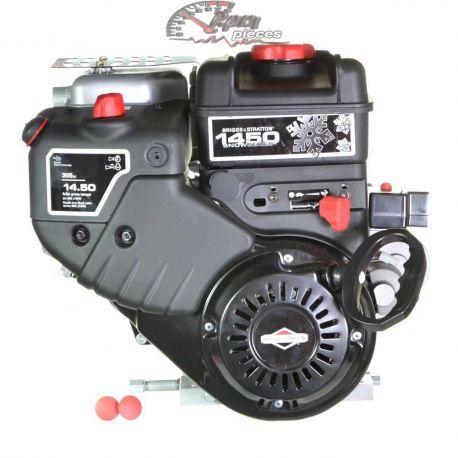 Motor Briggs & Stratton 20M307-0001-F1