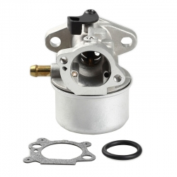 Carburetor briggs&stratton 799868