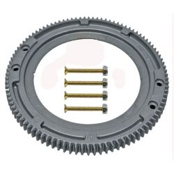 Briggs & Stratton 696537 Flywheel Gear