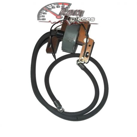 Module d'allumage (coil) Briggs & Stratton 392329