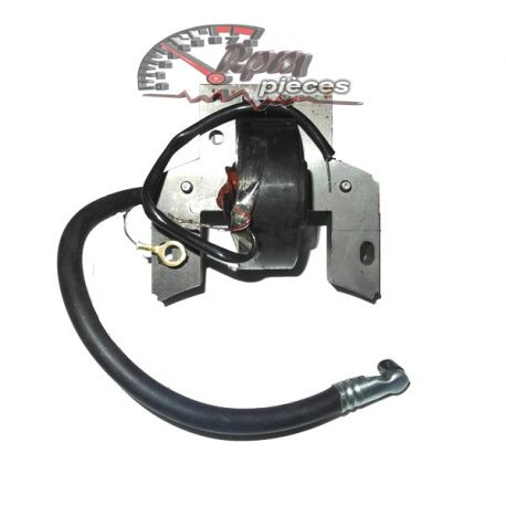 Ignition Coil for Briggs & Stratton 298502