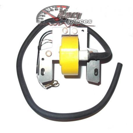 Module d'allumage (coil) Briggs & Stratton 298968
