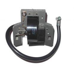 Module d'allumage (coil) Briggs & Stratton 397358