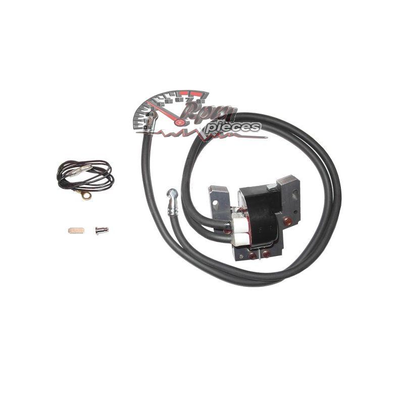 module d 39 allumage coil briggs stratton 394891. Black Bedroom Furniture Sets. Home Design Ideas