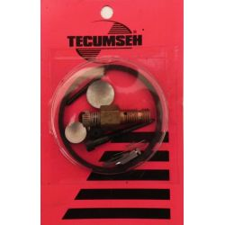 Kit de carburateur  Tecumseh 31840