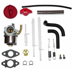 Carburetor briggs&stratton 798917