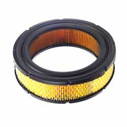 Air filter Briggs & Stratton 841856