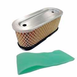 Air filter Tecumseh 36356