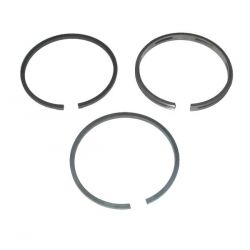 Ring Set  Briggs&stratton 290291
