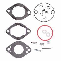 Carburetor repair kit Briggs & stratton 590453